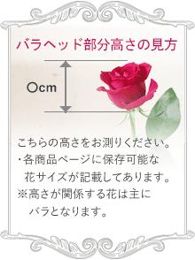 こちらの高さをお測りください。各商品ページに保存可能な花サイズが記載してあります。※高さが関係する花は主にバラとなります。